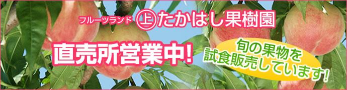 たかはし果樹園直売営業中!旬の果物を試食販売しています!