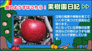 果樹園日記